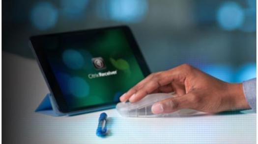 Ratón Citrix para iPad blog virtualizando con Citrix