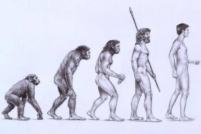 Ley de Evolución de la Selección Natural blog virtualizando con Citrix