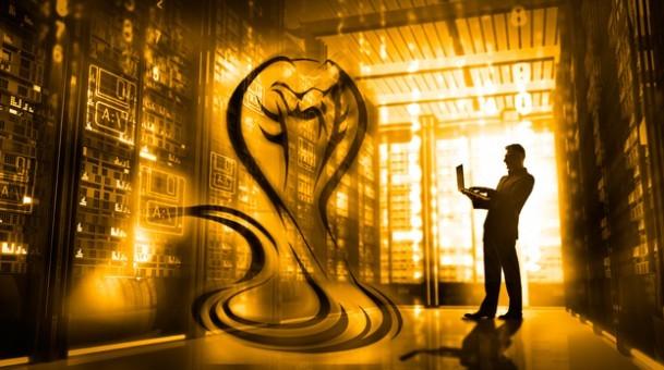 Vulnerabilidad Venom blog optimizando redes con Citrix 2